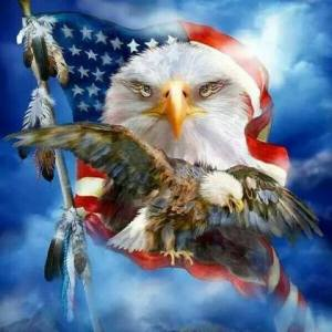 Eagle Patriot